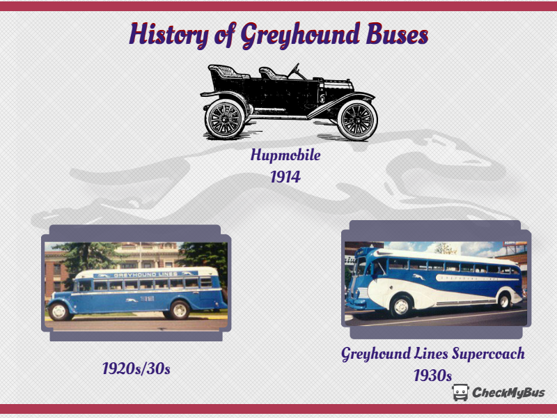Greyhound Bus - Tickets, Schedules and Discounts | CheckMyBus