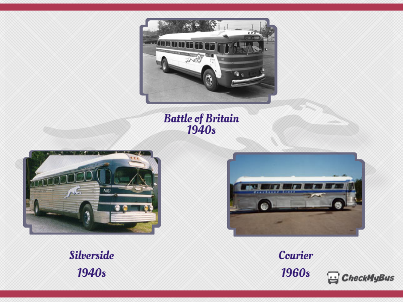 History of Greyhound Buses