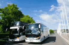 All Coach Companies at a Glance