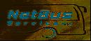 NetBus